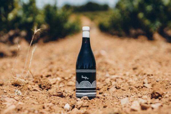 Vino singular tinaja