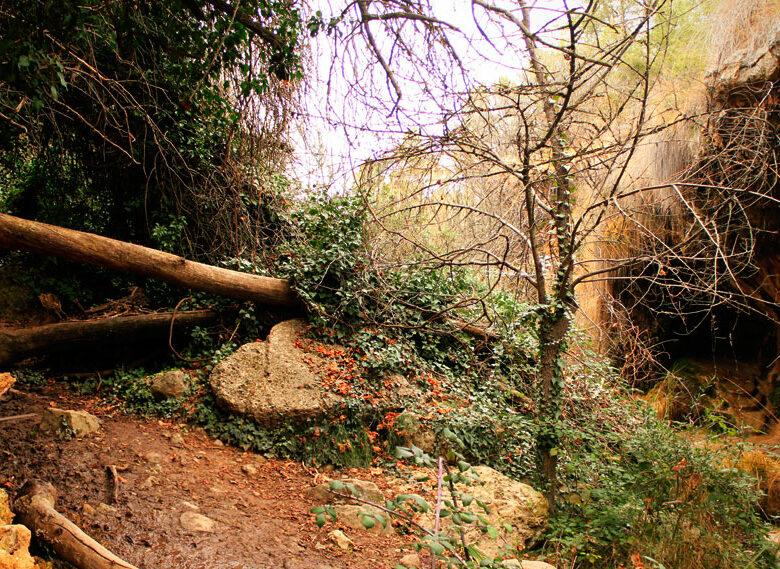 Cueva de los Ángeles